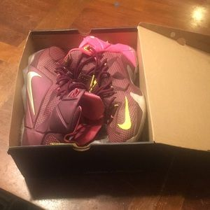 Nike Lebron James Dbl HLX.  High tops